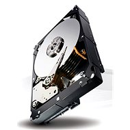 Seagate Constellation ES.3 3000GB