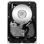 Seagate Cheetah 15K.7 300GB SAS